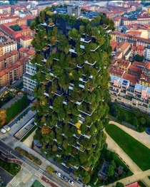 The vertical forest in Milan Italy