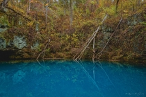 The vibrant blue waters of Round Spring hidden in the forests of Southern Missouri