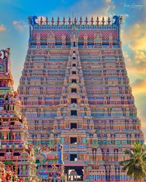 The vibrant Sri Ranganathaswamy Temple India