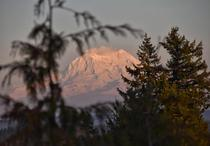 The view of Mt Rainier from Overlook Point Park