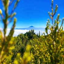 The view of Teide Volcano in Tenerife from the island of La Gomera