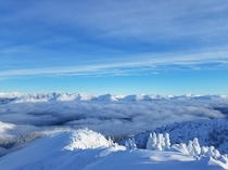 The view was almost as good as the skiing Somewhere in the Canadian Rockies British Columbia