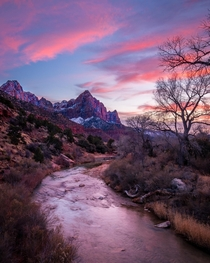 The Watchman Zion National Park Utah  IG cwaynephotography
