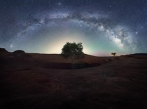 The well-trees of Dance Hall Rock under  degree view of the Milky Way Galaxy - UT USA