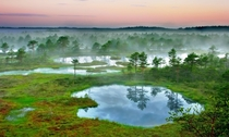 The wetlands of Estonia