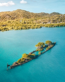 The wreck of the SS City of Adelaide in Australia has become an accidental island