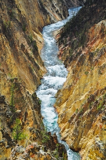 The Yellowstone River cutting through yellow stone of the Grand Canyon of the Yellowstone WY