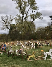 Theres a field in Massachusetts where someone apparently dumped an old rocking horseand it has collected more and more over the years