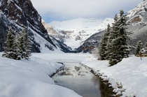 Theres no bright blue water but here is a snowy Lake Louise in early spring