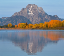 Theres only a few days a year with all the colors at peak beneath Mt Moran Grand Teton NP