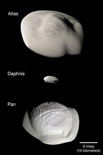 These weird looking moons of Saturn are interesting in that they accumulate so much material from Saturns rings that they looked flattened out More info - httpsapodnasagovapodaphtml
