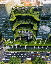 Think Green For A Better World Singapore