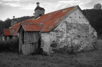 This abandoned cottage now only provides shelter for the sheep  by Ian Murray