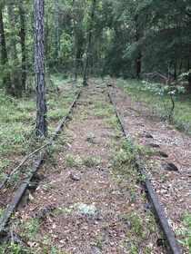 This abandoned railway runs from Perry Florida all the way the Tallahassee Florida Some sections of the rail have dates as far back as  printed on them