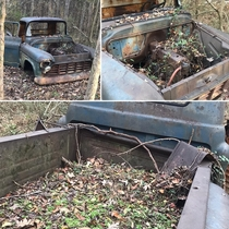 This abandoned truck I found in the woods