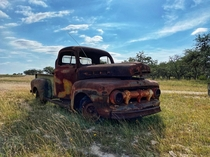 This faithful old beast left out to pasture in the Texas hill country