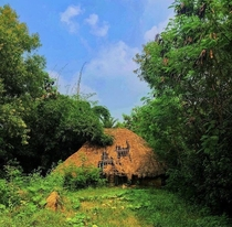 This house stands on memories alone An abandoned traditional house in the villages of Odisha India