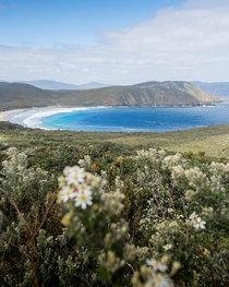 This image was taken from Bruny Island located off Tasmanias south coast Its a beautiful remote location with an incredible rugged landscape x OC