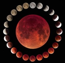 This is a composition of  different pictures taken along a lunar eclipse In the centre is including the maximum of the total eclipse