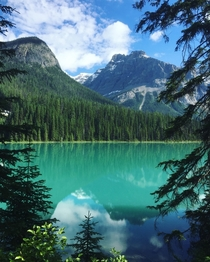 This is Emerald Lake an hour away from the infamous Moraine Lake