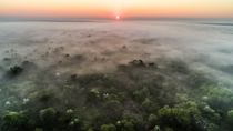 This is Gorongosa National Park in Mozambique Its an African gem this subreddit would love and a place Ive gotten to call home for the past three years Its also been devastated by Cyclone Idai in the past week causing a severe humanitarian crisis Please h