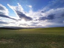 This is what I see when I go jogging before the sunset Tuscany countryside Siena Italy