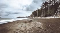 This is what the north-westernmost tip of the Lower  looks like Rialto Beach Washington