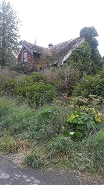 This overgrown house that no one seems to know the age of Taken by myself on a stroll