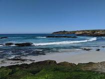 This past weekend was the first time I saw the water this blue Absolutely beautiful Carmel Beach Carmel-By-The-Sea CA