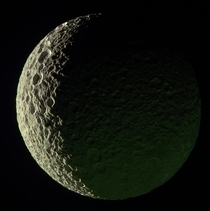 This processed image of Saturns moon Mimas looks spongy
