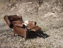 This recliner in the middle of nowhere Texas