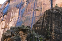 This rock so blue Zions National Park Utah  OC