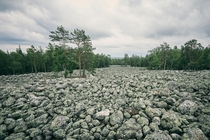 This sea of rocks was never a river bed A glacier crushed up a mountain in Sweden and left these stones behind when it retreated