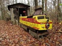 This small yellow train was once a beloved attraction at Craighead Cavernsnow known the Lost Sea Running from the s to  the train was a popular feature with small children and rail enthusiasts Now forgotten it rusts quietly at the edge of the woods Sweetw
