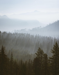 This was from a smokey morning in Yosemite National Park The way the light came up over the mountains and cut through the smoke and trees was incredible This world never ceases to amaze me
