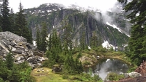 Thought I was walking through Skyrim on my hike the other day Snow Lake Trail Alpine Wilderness Snoqualmie Pass WA  OC