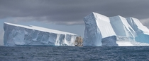 Three-masted Barque Europa navigates gigantic icebergs during an expedition to Antarctica a month ago For scale the ship is m ft long and m ft tall