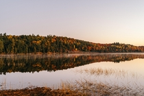 Throwback to Fall in Algonquin Park ON