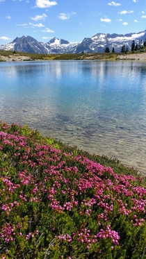 Throwback to summer Elfin lakes BC