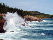 Thunder Hole in Acadia National Park  OC