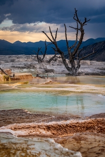 Thunderstorms in the distance - Mammoth Hot Springs Yellowstone NP  IGtravlonghorns