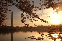 Tidal Basin Washington DC