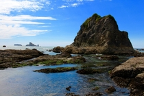 Tide pools at Rialto Beach Olympic National Park Washington