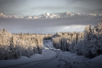 Times of Uncertainty Beautiful morning in Denali Park Alaska by Cheyzan Rivas