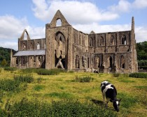 Tintern Abbey abandoned in  in Wales