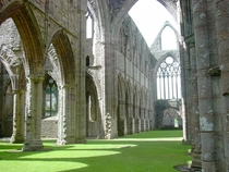 Tintern Abbeys Carpet of Grass