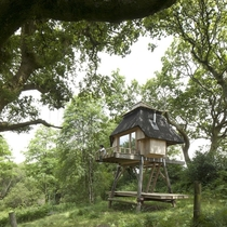 Tiny Stilted Hut by Nozomi Nakabayashi in the woods of Dorset England