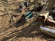Todays hike led us past a pile of abandoned cars near Crownsville Mental Hospital in Crownsville MD