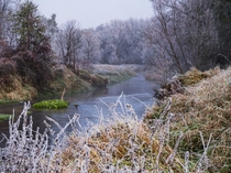 Todays misty and frosty morning If autumn and winter had a child it would probably look like this Czarn Nida river Poland