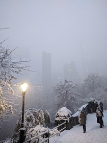 Todays surprise snowfall in NYCs Central Park
